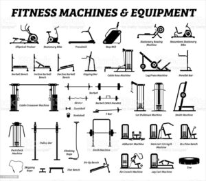 the image shows types of equipment used to perform excersise in gym